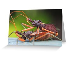 Close encounters Greeting Card