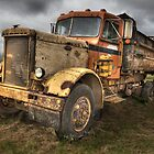 Peterbuilt Truck, Kauai by Mike Traynor Photography