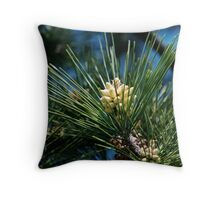Pine Cones, Someday Throw Pillow
