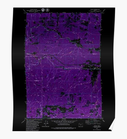 USGS Topo Map Oregon Midway 362932 1979 24000 Inverted Poster