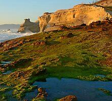 The Wonders Of Cape Kiwanda by Nick Boren