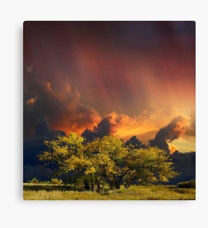 4007 Canvas Print