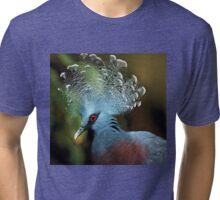 Victoria Crowned Pigeon Tri-blend T-Shirt
