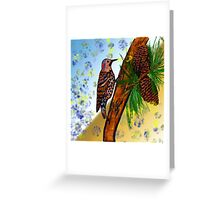 Woodpecker and Pine Cones Greeting Card