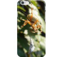Spider's Lunch iPhone Case/Skin