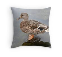 Spring Duck Throw Pillow