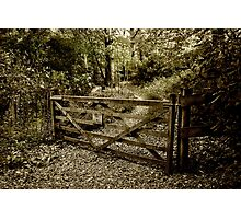 The Woodland Gate Photographic Print