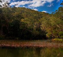 port hacking river by muzzicci