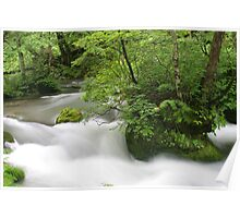 Ethereal Forest Stream Poster