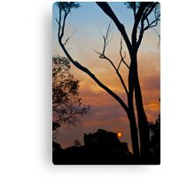 Fire Sun Canvas Print