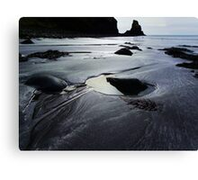 The Rock and The Tide Canvas Print