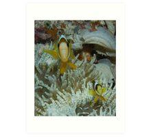 Nemo & Son Art Print