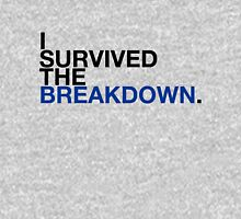 i survived the breakdown (II) T-Shirt