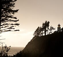 Heceta Head Lighthouse by SandrineBoutry