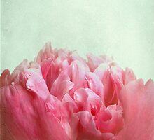 skykissed by Iris Lehnhardt