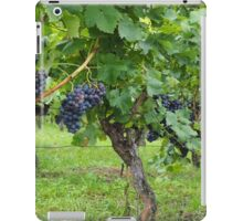 Grapevines At Harvest iPad Case/Skin