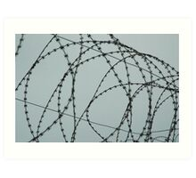 Wire at Robben Island #2 (Color) Art Print