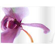 Eukaryotic Architecture - Purple Orchid Poster