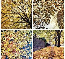 Change of Season on St Kilda Road by Greg Tippett