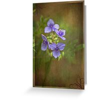 Beauty and Fun Greeting Card