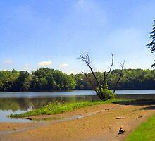 Stonelick Lake, Ohio by debbiedoda
