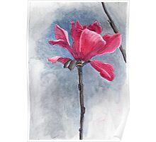 """Magnolia """"Vulcan"""" Poster"""