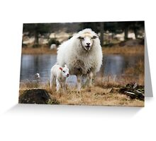 It is Spring - Mother Sheep with Lamb Greeting Card