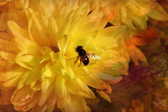 Nectar for Life by Elaine  Manley
