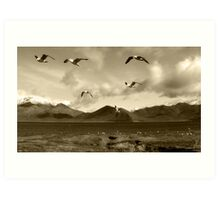 The Great Gull Escape Art Print