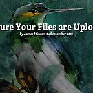 How to Make Sure Your Files are Uploaded Correctly by Redbubble Community  Team