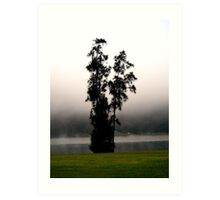 Tree in the mist Art Print