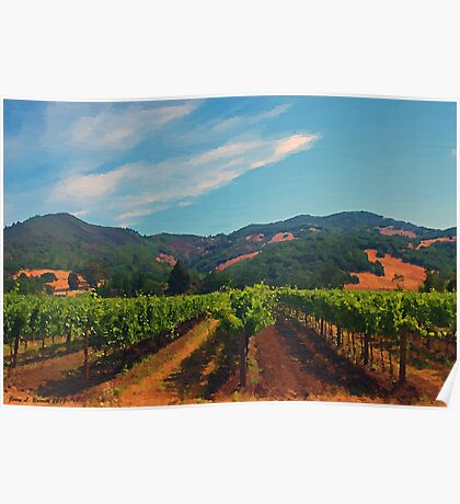 California Vineyard Poster