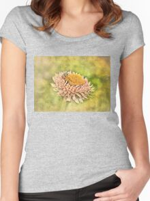 Beetle on the Strawflower Women's Fitted Scoop T-Shirt