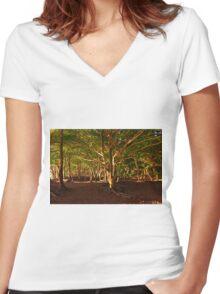 Na Pali Trail, Maui - HAWAII Women's Fitted V-Neck T-Shirt