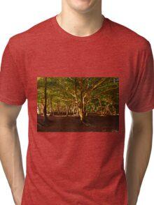 Na Pali Trail, Maui - HAWAII Tri-blend T-Shirt