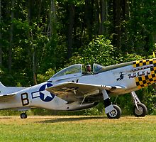 1945 North American P-51D Mustang by Robert Burdick