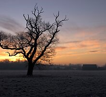 Helmingham sunrise by DanStyles