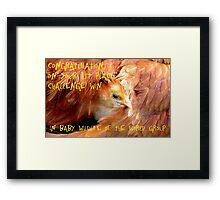 Baby Wildlife Of The World Banner Framed Print