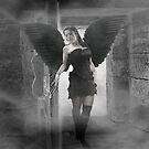 Dark Angel by Louise Morris
