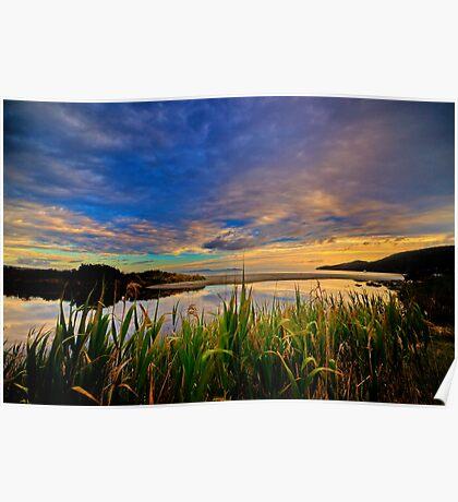 Captain Cook Creek Reeds HDR - Bruny Island, Tasmania, Australia Poster