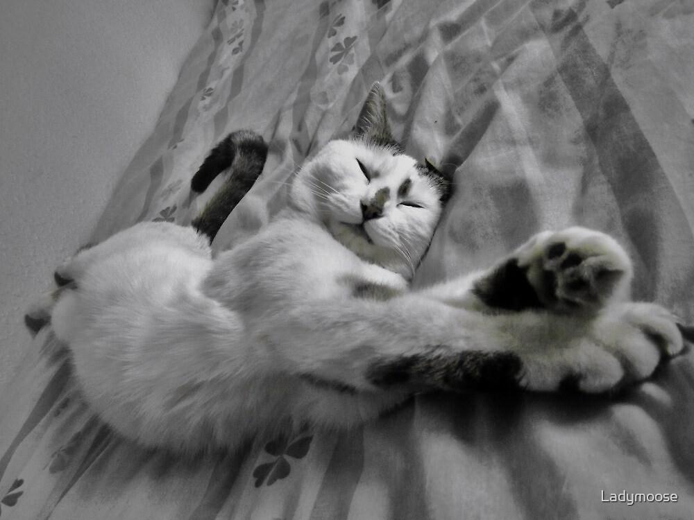 The Longest Sleep by Ladymoose