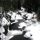 A winter river runs through it- Banff Canada by John Taylor