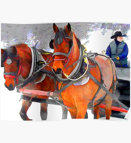 A winter sleigh ride-Lake Louise, Canada Poster