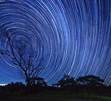 Startrails on a Moonless night by David de Groot