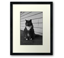 PC and I don't mean Politically Correct Framed Print