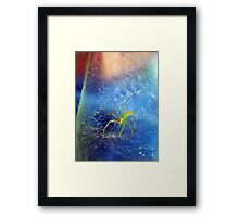 ©NS Ice Ice Baby Spider IIA. Framed Print