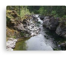 Koksilah River  Canvas Print