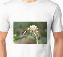 Open Glasswing on white flower - Greta oto Unisex T-Shirt