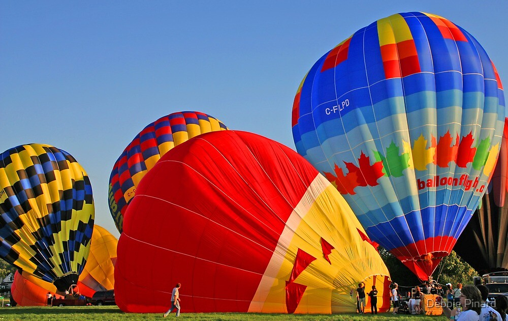 Getting Ready to Fly 2 - Gatineau Quebec by Debbie Pinard