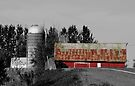 The Red Barn - Carp Ontario by Debbie Pinard